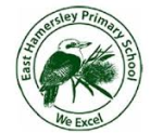 East Hamersley Primary