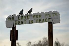 Pets RIP