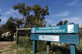 shepherds-bush