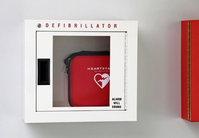 d498485c-defibrillator 2